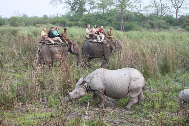 Unterwegs im Kaziranga Nationalpark Bild: W. Rietschel