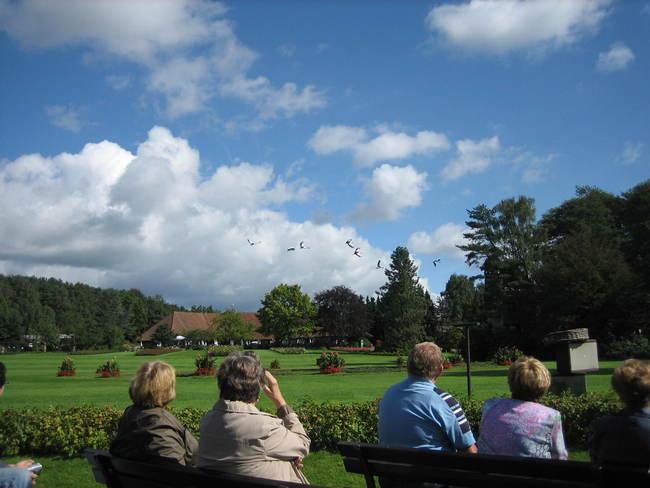 Während der Flugshow im Vogelpark ziehen Kondore und bunte Papageien an den Zuschauern vorbei Bild: N. Warth